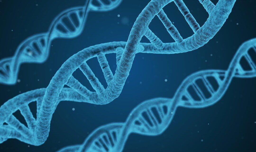 Nowotwór – choroba genomu, nie narządu