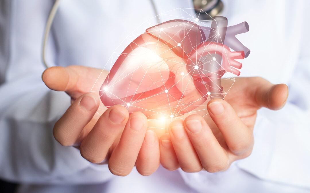 Potas chroni serce